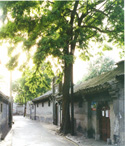 Beijing One Day Private Tours